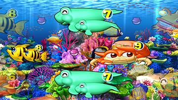 珊瑚礁リーチ